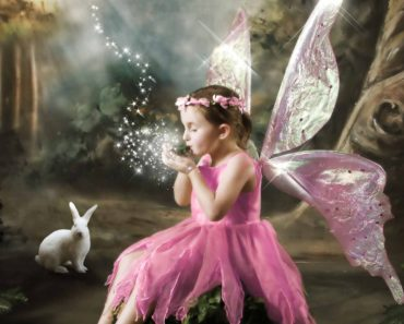 Top 10 Fairies Books of 2015