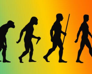 Top 10 Evolution Books
