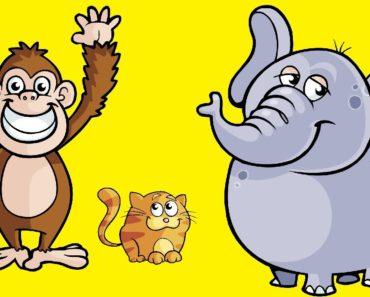 Popular Animal Fiction Books