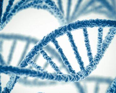 Popular Books on Genetics